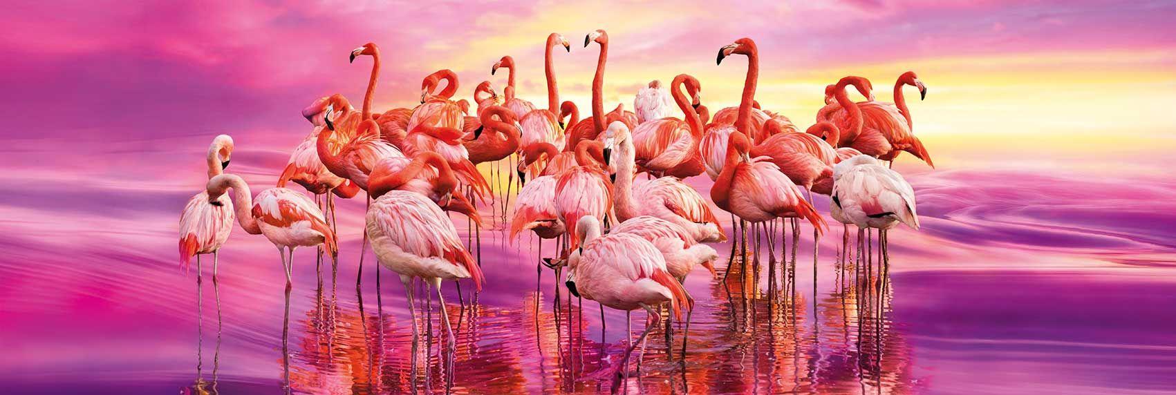 Панорамен пъзел Clementoni от 1000 части - Танцът на розовите фламинга - 2
