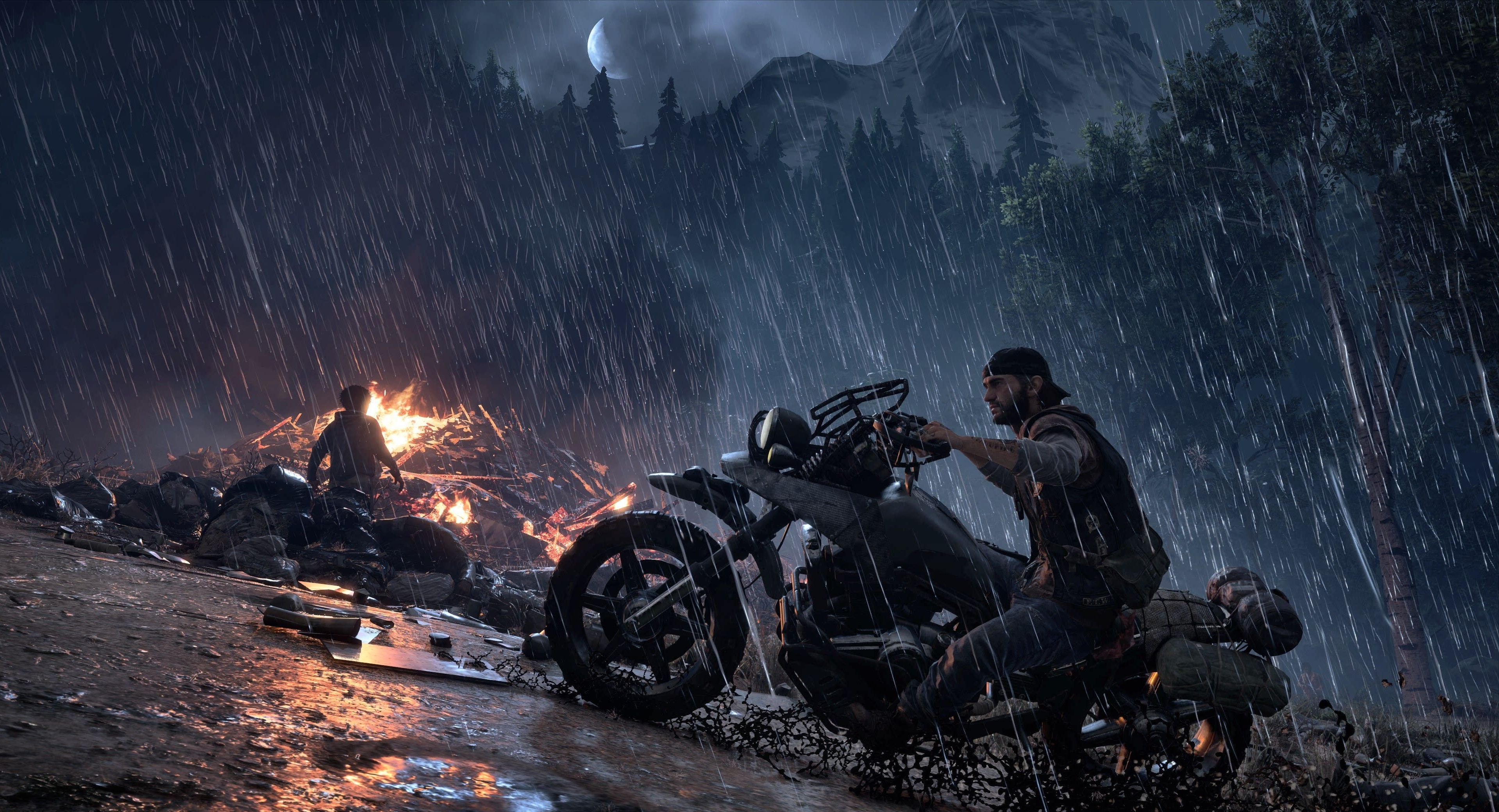 Days Gone Special Edition (PS4) - 13