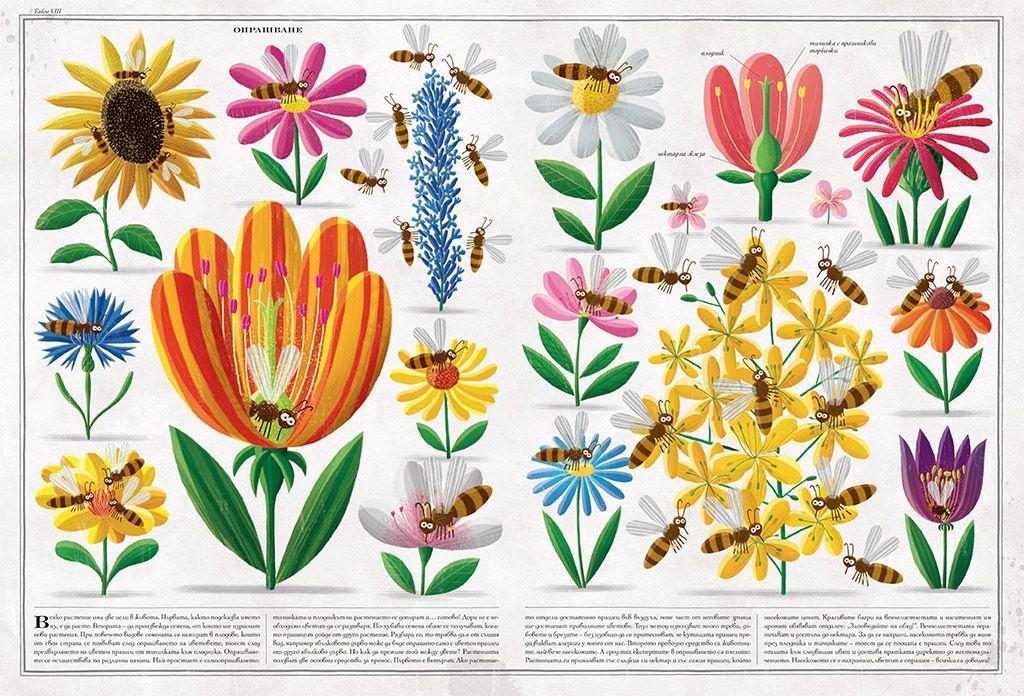 Пчелите - 3