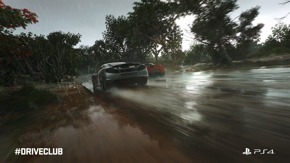 DriveClub (PS4) - 31