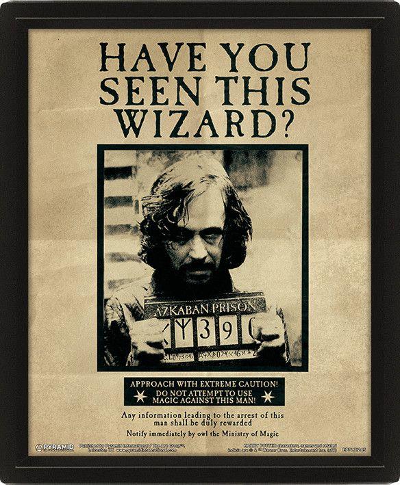 3D плакат с рамка Pyramid - Harry Potter: Potter / Sirius - 1