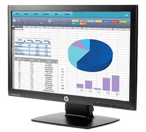 HP ProDisplay P202 20-inch Monitor - 3