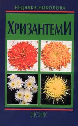 Хризантеми - 1