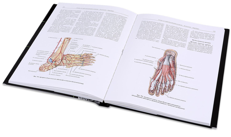 "Колекция ""Атлас по анатомия на човека"" - 5"
