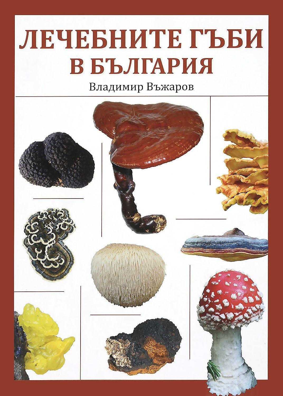 Лечебните гъби в България - 1
