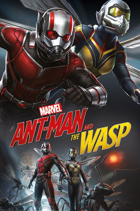 Макси плакат - Ant-Man and The Wasp (Dynamic) - 1