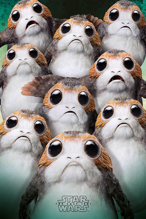 Макси плакат Pyramid - Star Wars The Last Jedi (Many Porgs) - 1