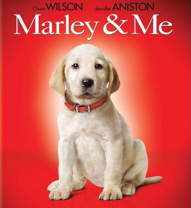 Марли и аз (Blu-Ray) - 1