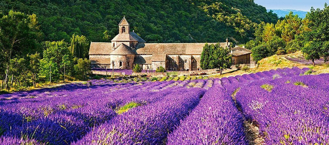 Панорамен пъзел Castorland от 600 части - Абатството Нотр Дам в Сенанк, Франция - 2