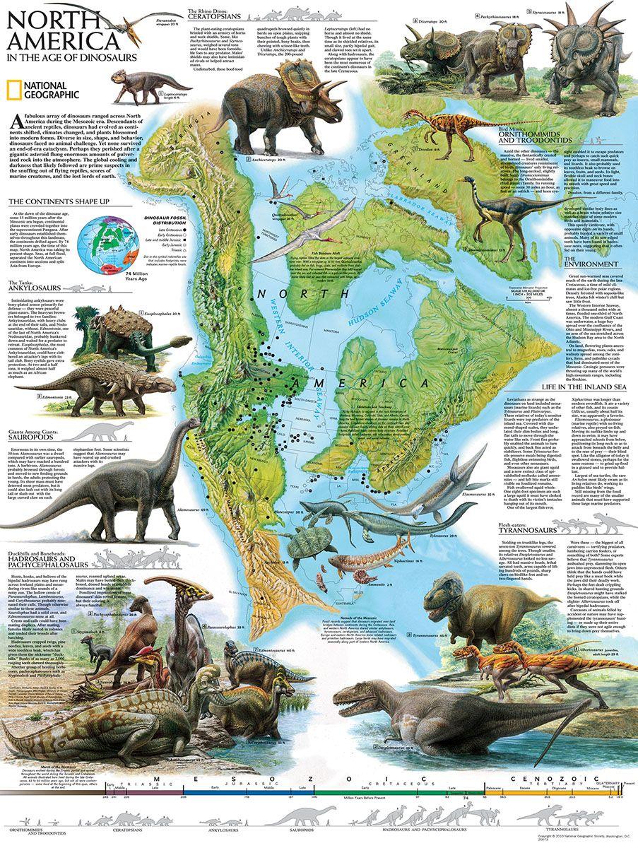 Пъзел New York Puzzle от 500 части - Динозаври, Северна Америка - 1
