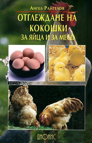 Отглеждане на кокошки за яйца и за месо - 1