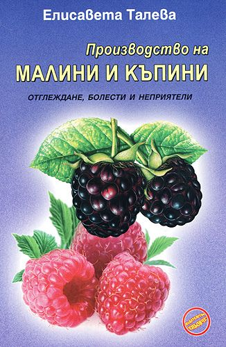 Производство на малини и къпини - 1