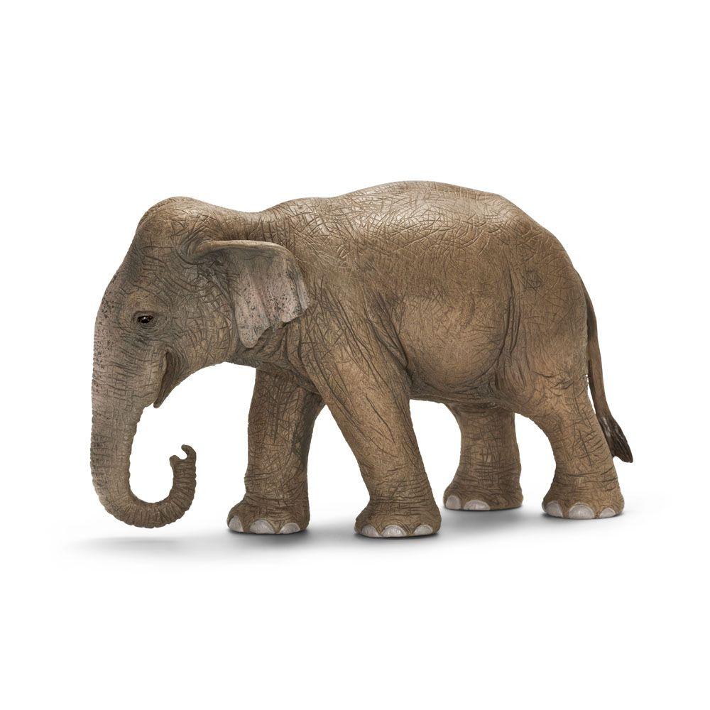 Фигурка Schleich от серията Дивия живот - Азия и Австралия: Индийски слон - женски - 1