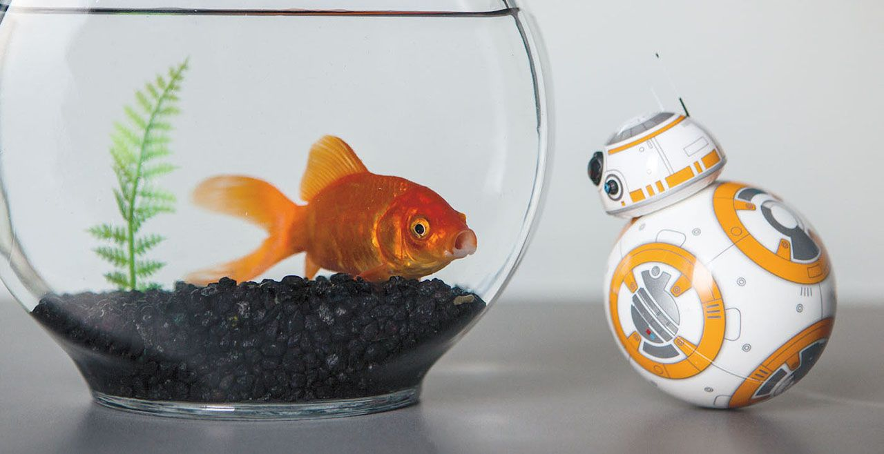 Робот Sphero BB-8 App-Enabled Droid - 6