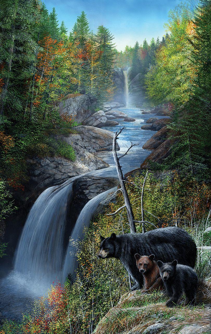 Пъзел SunsOut от 550 части - Мечки на водопада, Кевин Даниел - 1