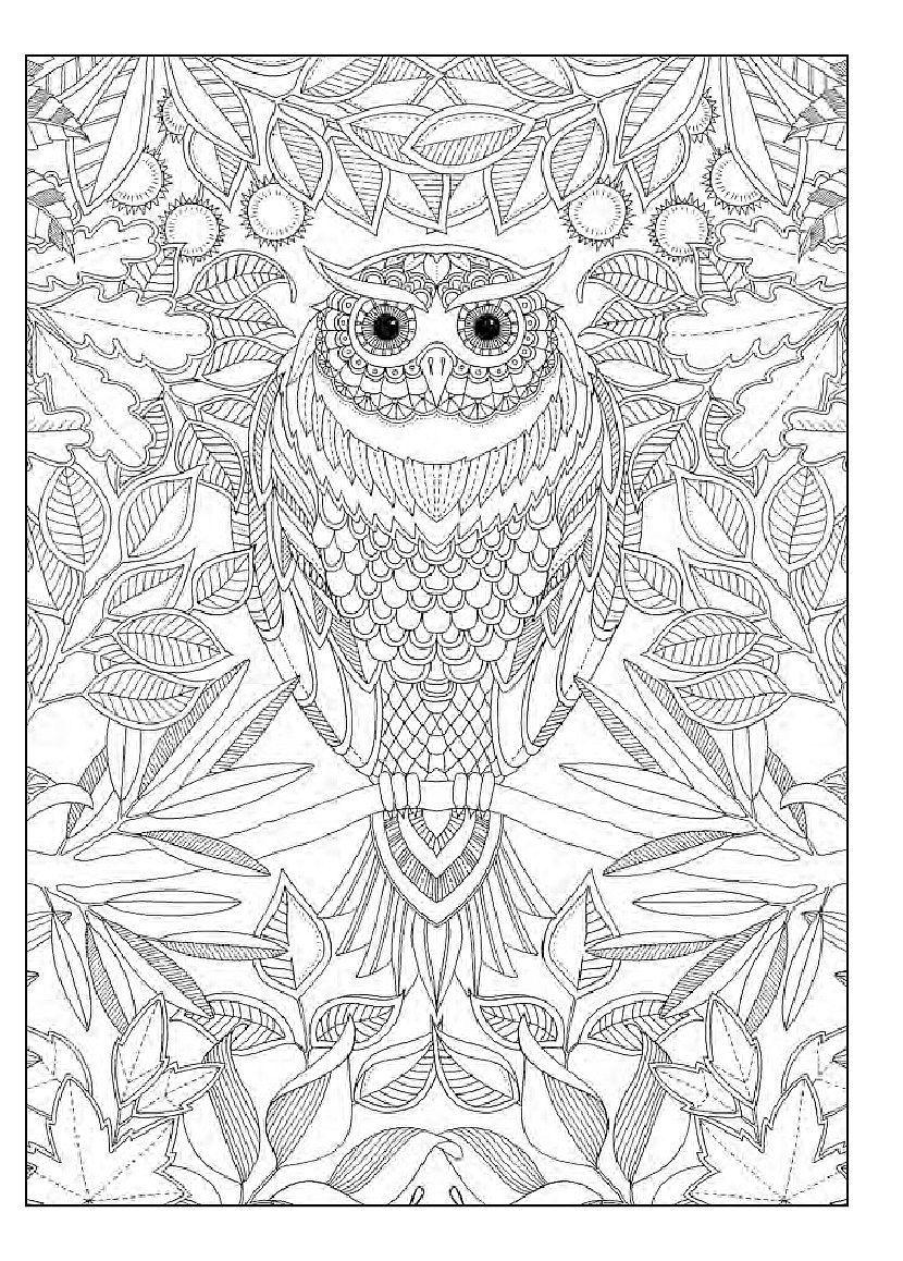 Тайната градина - 20 картички - 2