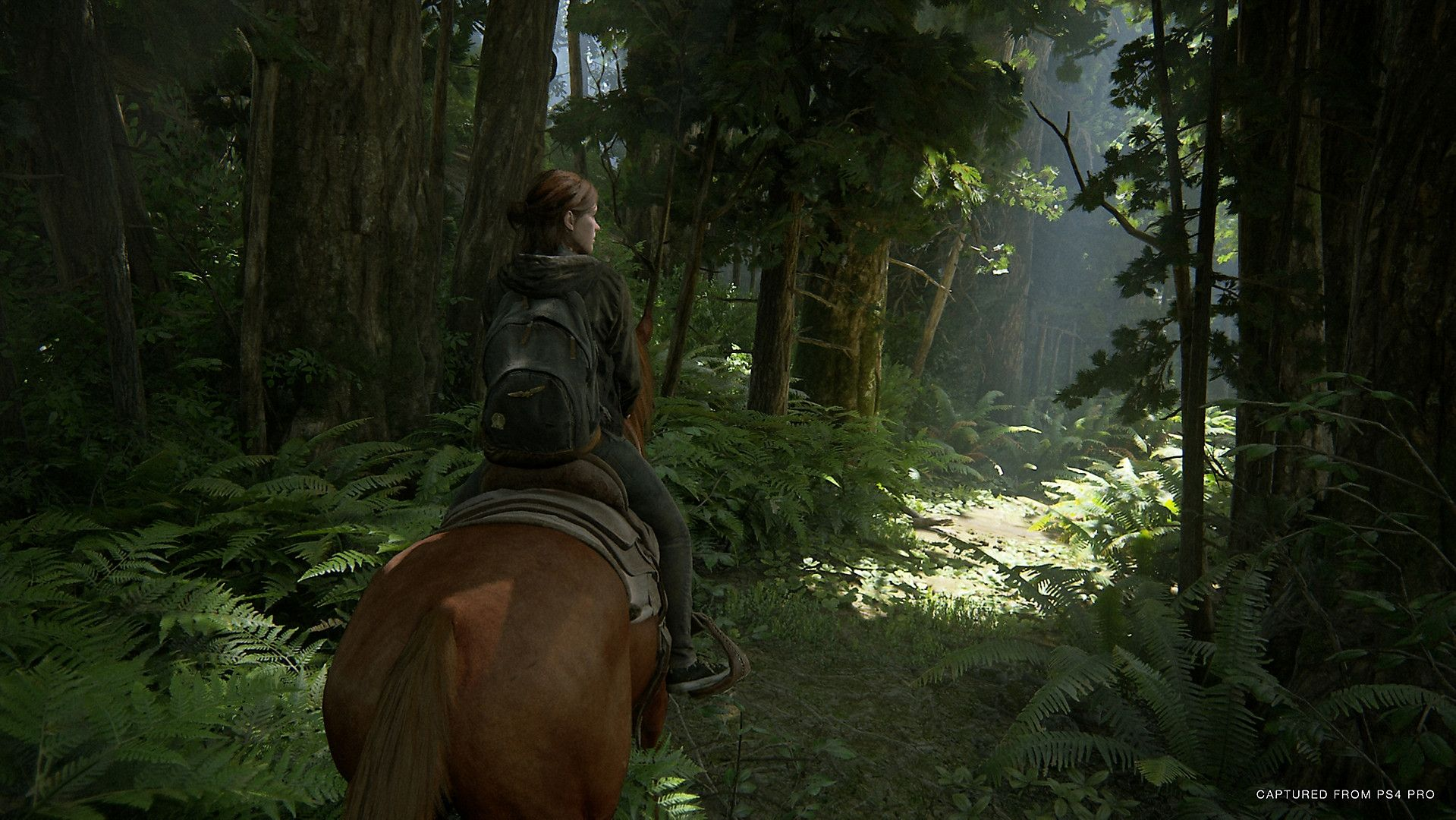 The Last of Us: Part II (PS4) - 17