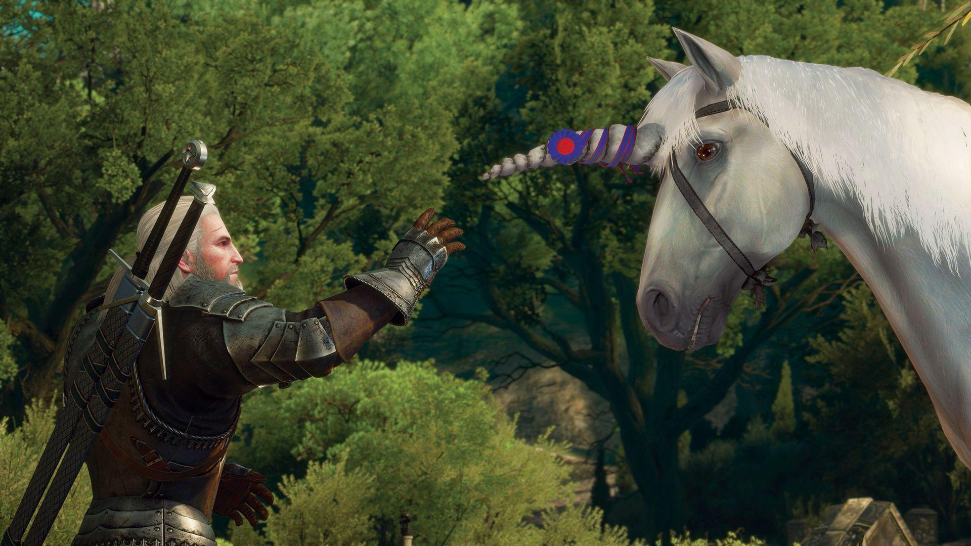 The Witcher 3: Wild Hunt - Blood & Wine (PC) - 9