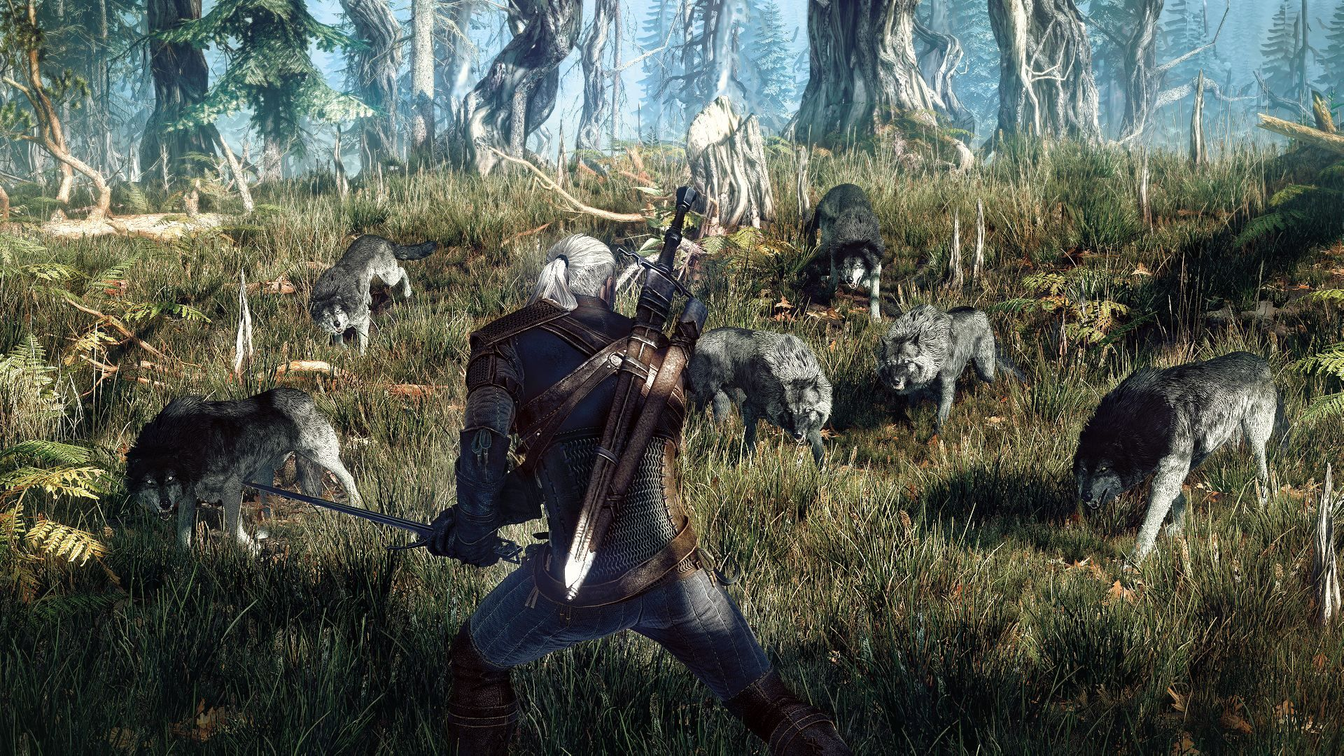The Witcher 3: Wild Hunt GOTY Edition (PC) - 11