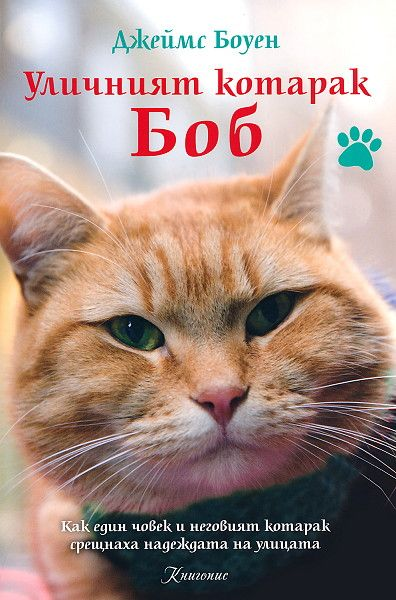 Уличният котарак Боб - 1
