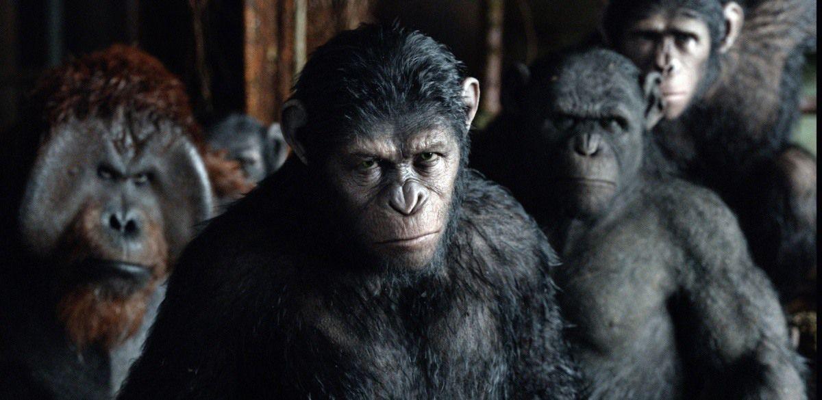 Зората на Планетата на маймуните 3D (Blu-Ray) - 8
