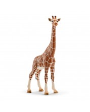 Фигурка Schleich от серията Дивия живот - Африка: Жираф мрежест - женски