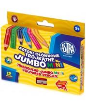 Цветни джъмбо моливи Astra - 12 броя, с острилка -1