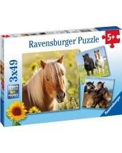 Пъзел Ravensburger от 3 x 49 части - Красиви коне