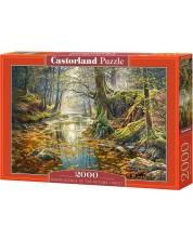 Пъзел Castorland от 2000 части - Със спомен за есенна гора, Греъм Туайфорд