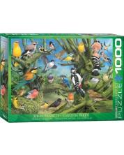 Пъзел Eurographics от 1000 части - Градински птици, Джон Франсис -1
