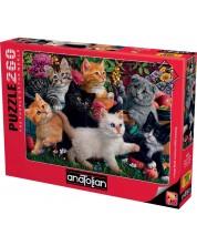 Пъзел Anatolian от 260 части - Игриви котета