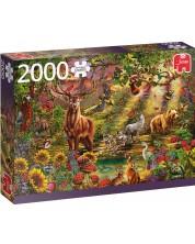 Пъзел Jumbo от 2000 части - Магическа гора на залез