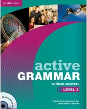 Active Grammar Level 3 without Answers and CD-ROM -1