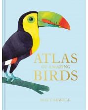 Atlas of Amazing Birds -1