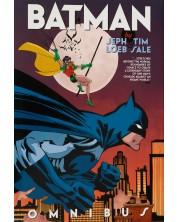 Batman by Jeph Loeb & Tim Sale Omnibus -1