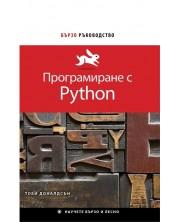 Бързо ръководство: Програмиране с Python
