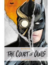 Batman: The Court of Owls (DC Comics novel)
