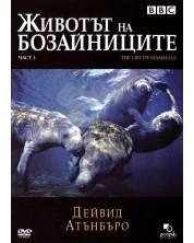 Животът на бозайниците - Част 3 (DVD)