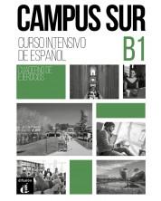 Campus Sur B1 - Cuaderno de ejercicios + Aud-MP3 descargeble -1