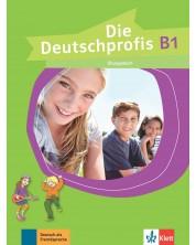 die-deutschprofis-b1-ubungsbuch