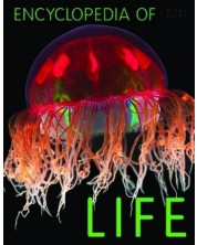 Encyclopedia of Life (Miles Kelly)
