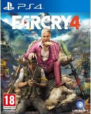 Far Cry 4 (PS4) -1