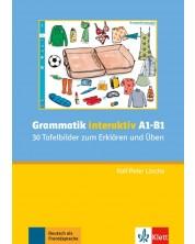 Grammatik interaktiv A1-B1-30 Tafelbilder zum Erklaren /Uben-CD-ROM -1
