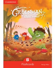 Greenman and the Magic Forest B Flashcards (Pack of 48)