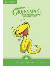 Greenman and the Magic Forest A Phonics Flashcards (Pack of 38)