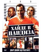 Хайде в пандиза (DVD)