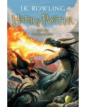 Harry Potter and the Goblet of Fire -1