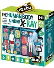 Образователен пъзел Headu Montessori - Човешкото тяло -1