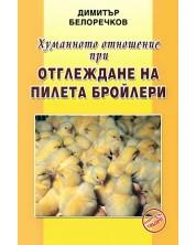 Хуманното отношение при отглеждане на пилета бройлери