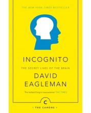 Incognito: The Secret Lives of The Brain -1